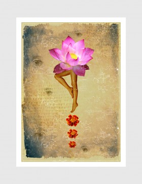 Lotus Walk 02